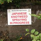 A notice warns of knotweed spraying in Wexford town in 2013. The problem is still a hot topic at meetings of the local authority