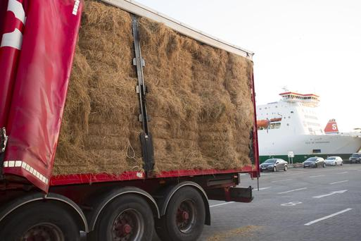 Fodder arriving on a Nolan Transport truck at Rosslare Europort last week