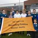 Coláiste Abbain Adamstown recently received their Amber flag. Pictured are James Gardiner, Tomy Tynan, teacher; Evan Roche, Michael Redmond, Rachel Redmond, David Plumber, Holly Power, Alannah Delaney, Anthing Finn, Nadia Furlong and Fiona Quirke.
