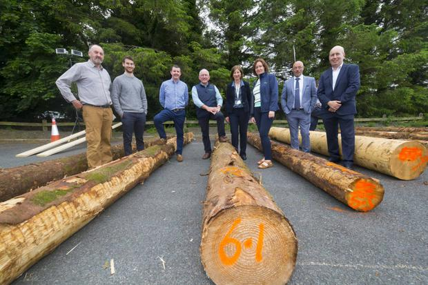 Pictured at the 'Talking Timber' event are: Tom Hickey, Irish Wood Producers, Luke Middleton, Dept. of Agriculture Food and the Marine, Robert Windle, Forest Service, Jim Hurley, Euroforest Ireland, Nuala-Frances McHugh, Teagasc, John Spink, Teagasc, Head of Crop Research, and Trevor McHugh, (IFFPA). Picture: Patrick Browne