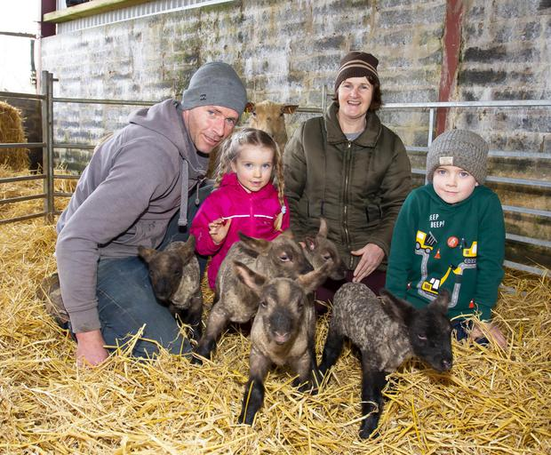 Gus Connick from Camross with the five lambs. Also in the photograph is Gus's mother Margaret Connick and children Leona, aged 3, and Tommy, aged 6