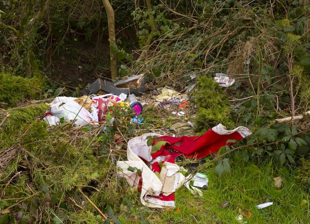Recent dumping discovered at Scarke