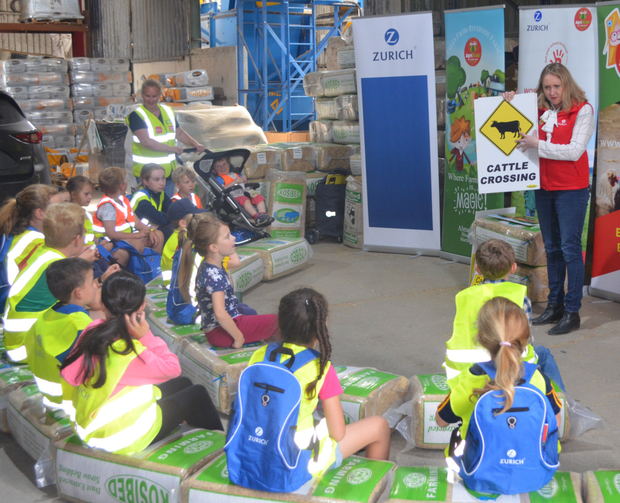 Some of the children at the Zurich AgriKids workshop at Kehoe Farming in Foulksmills