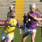 Jack Fortune (Wexford Gold) tries to hook Conall O Crualaoich (Wexford Purple).