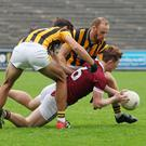 Glen Malone and Aidan Cash of Shelmaliers apply pressure on a grounded Aaron Maddock (St. Martin's).