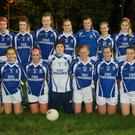 The Shelmalier squad before Friday's league final success in Craanford