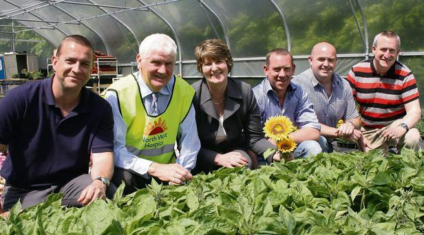 Checking the sunflowers at Loughan House were Officer Alan Wallace, John Kelly, North West Hospice; Ethel Gavin, Governor, Loughan House; Alan McGowan, Jimmy Kelly and Cathal Martin