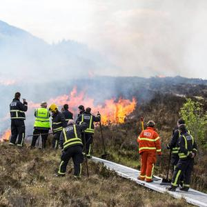 Sligo County Council is counting the cost of a spate of gorse fires last month