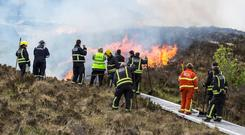 Sligo County Council is counting the cost of a spate of gorse fires last year