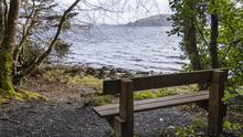 Hazelwood has plenty of viewing areas like this one of Lough Gill. Photos: Donal Hackett