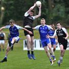 Niall Murphy wins possession for Tubbercurry. Pic: Tom Callanan