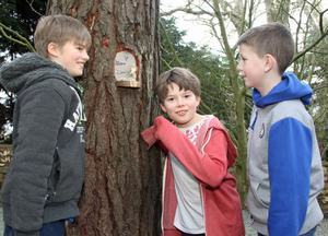 Helping position some of the fairies in Kilmokea Fairy Village were Myles and Cosmo Hewlett with Billy Bohanna