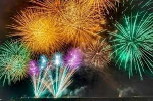 If your dog is frightened of fireworks, a herbal remedy could help