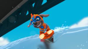 Zuma (voiced by Carter Thorne) in Paw Patrol: Mighty Pups