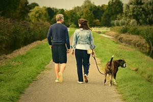 Dog walking has become a popular activity