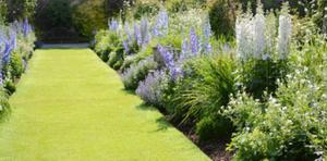 Herbaceous borders provide a little opportunity to show off in a most respectable way.