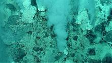 Evidence of possibly the oldest forms of life on Earth have been found in hot water vents on the ocean floor