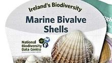 The Waterford-based National Biodiversity Data Centre pioneered the idea of swatches for identifying wildlife. Their latest addition to their growing collection is the new Marine Bivalve Shells identification swatch