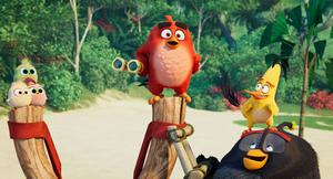 Red (voiced by Jason Sudeikis), Chuck (Josh Gad) and Bomb (Danny McBride) in The Angry Birds Movie 2.