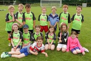 The under-7 year olds who took part in the Kellogg's Cúl Camp at St Anne's GAA Club grounds.