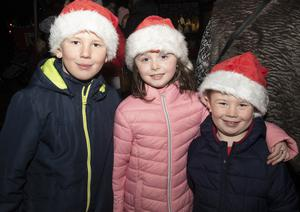 Brian Lacey, Jade Roche and Rhys Lacey at the switching on of the Christmas lights in Taghmon