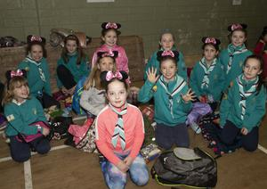 Piercestown Guides