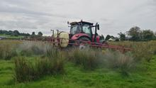 Tractor spraying pesticide on field with rushes.