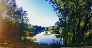 The beautiful view from the nature walk at Talbot Lake