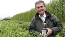 Des Jeffares with his blackcurrant crop, and famous cordial