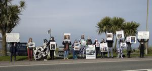 Protestors at Rosslare Europort calling for an end to the shipping of live animals.