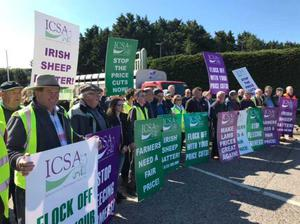 Crowds of sheep farmers gather in Camolin for protest