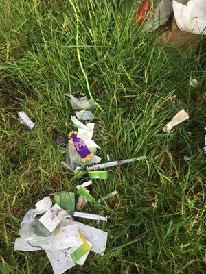 Used syringes and other rubbish discovered at Ferrybank during the Tidy Towns clean-up