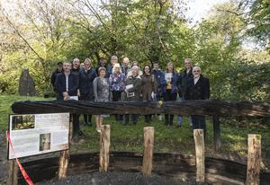 The gathering at the Irish National Heritage Park for the unveiling of the Witness Tree, a 4,000 year old tree donated to the park by the Carroll family.