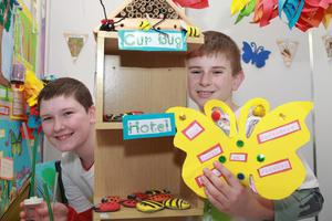 Pictured at the RDS Primary Science Fair from left was  John Joe Murphy and James Mahon. Beautiful bugs and butterflies: How can we encourage biodiversity? St Ibars N.S.