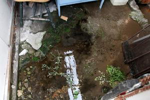 Right: the saturated floor of a shed at Ger Roberts' house in Antelope Road. Above: the back yard is constantly wet from the running water.