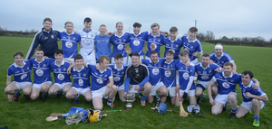 The Oylegate-Glenbrien squad celebrate after winning the Leinster Junior 'B' hurling title in Raheenagh, Co. Limerick, on Saturday