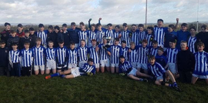 The all-conquering Good Counsel (New Ross) squad celebrating their Leinster championship success in Killeshin on Tuesday