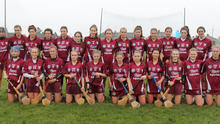 The St. Martin's squad prior to last year's victory over Oulart-The Ballagh in the Premier Senior camogie championship final in Bellefield
