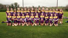 The Wexford minor camogie squad