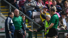 Wexford manager Davy Fitzgerald is sent to the stand by referee Johnny Murphy as fourth official Mick Murtagh from Westmeath looks on