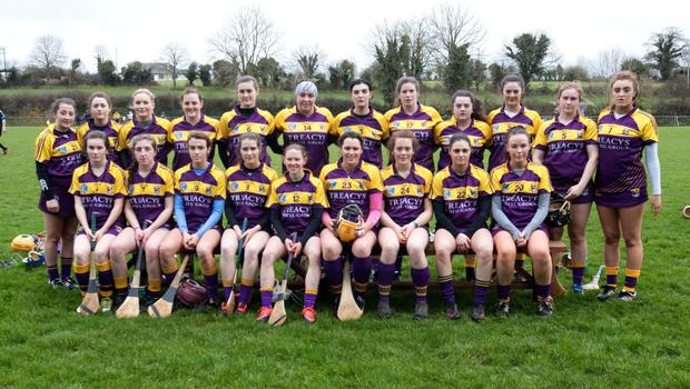 The Wexford panel prior to Sunday's one-point win over Tipperary in The Ragg