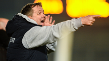 An animated Davy Fitzgerald on the sideline in MW Hire O'Moore Park in Portlaoise last January when Wexford beat Galway by one point after extra time to capture the Walsh Cup senior hurling title