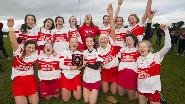 Ferns St. Aidan's celebrating after Sunday's Minor camogie success in Cushinstown