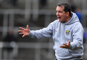 Davy Fitzgerald as animated as ever on the sideline in Nowlan Park on Sunday