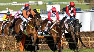Seán Flanagan and Jeff Kidder (left) jumping the last ahead of Sage Advice and Saint Sam on their way to winning the Boodles Juvenile Handicap Hurdle race at Cheltenham. Photo by Hugh Routledge/Sportsfile