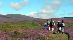 The Wicklow Walking Festival takes place over four days.