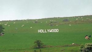 Hollywood features in a new RTÉ One documentary series.