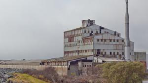 The former Wallboard factory site. Photo: Paul Messitt.