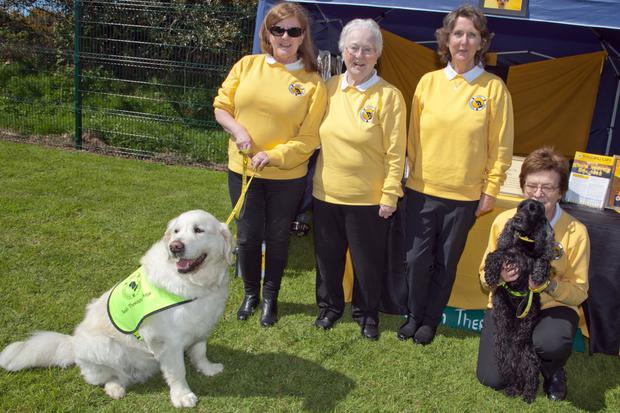 Margaret Kelly, Bernie Mills, Michaela Hayes and Brenda Rickard from Irish Therapy Dogs with Sammy and Magic