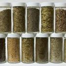 Some herbs and spices have healing qualities